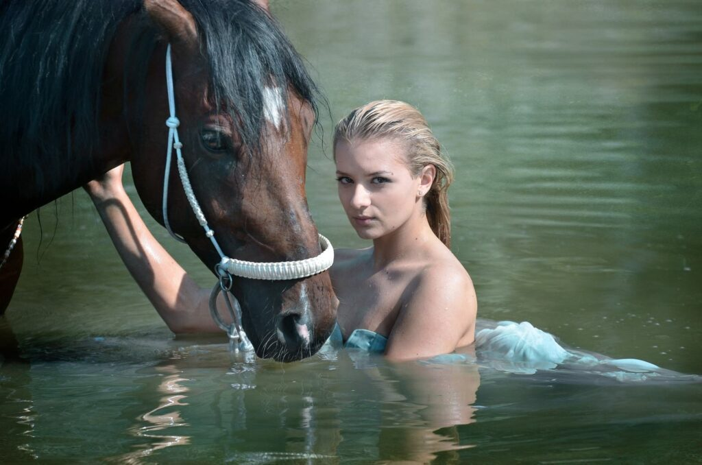 swimming-with-horse